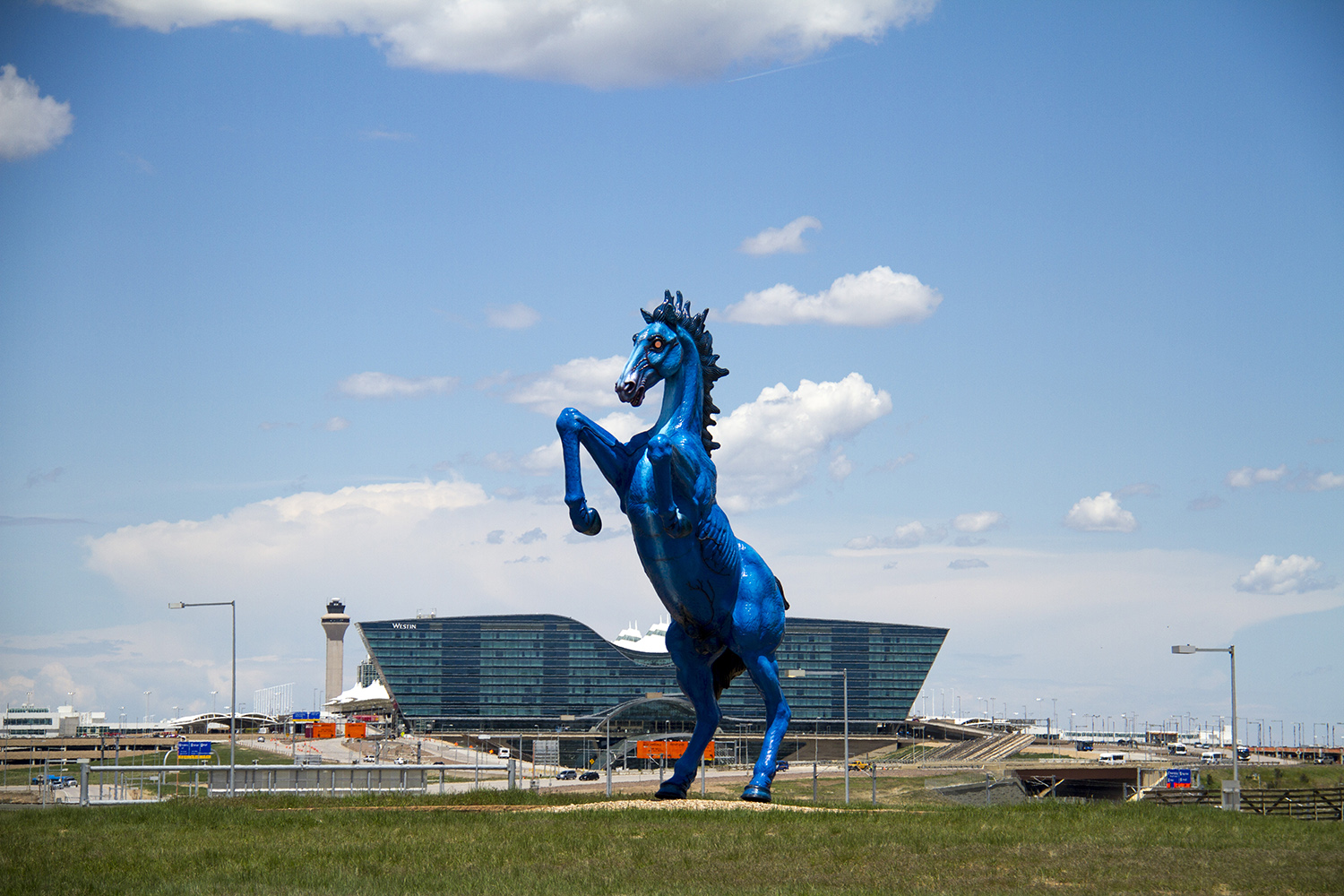 Denver International Airport's iconic demonic horse, known as Blucifer. (Kevin J. Beaty/Denverite)