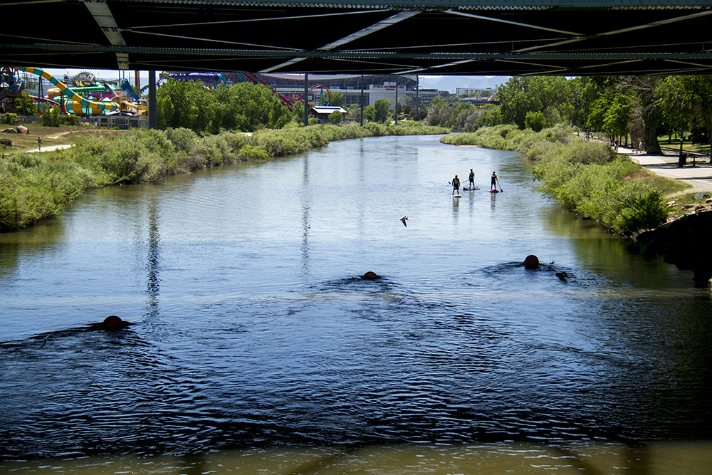 Matt Erickson, Caleb Scott, and Sean Moon paddleboard the South Platte just beyond Confluence Park. (Kevin J. Beaty/Denverite)