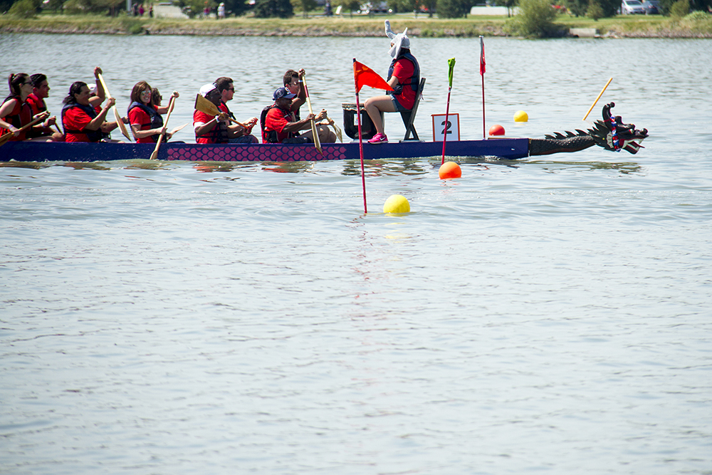 The Water Elephants, made up of Colorado Republican candidates and staff, cruise across the finish line in their first race at the Colorado Dragon Boat Festival. July 31, 2016. (Kevin J. Beaty/Denverite)  denver; colorado dragon boat festival; race; election; politics; darryl glenn; kevinjbeaty; denverite; colorado; sloan lake;