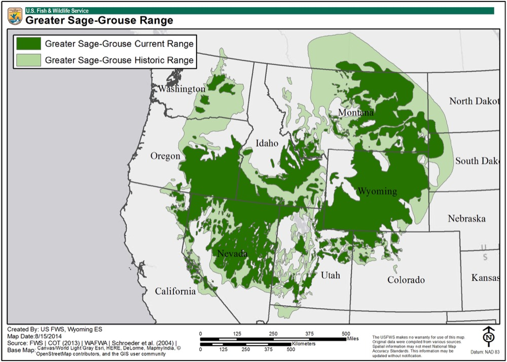 A map shows the current and historic habitat of the greater sage-grouse.