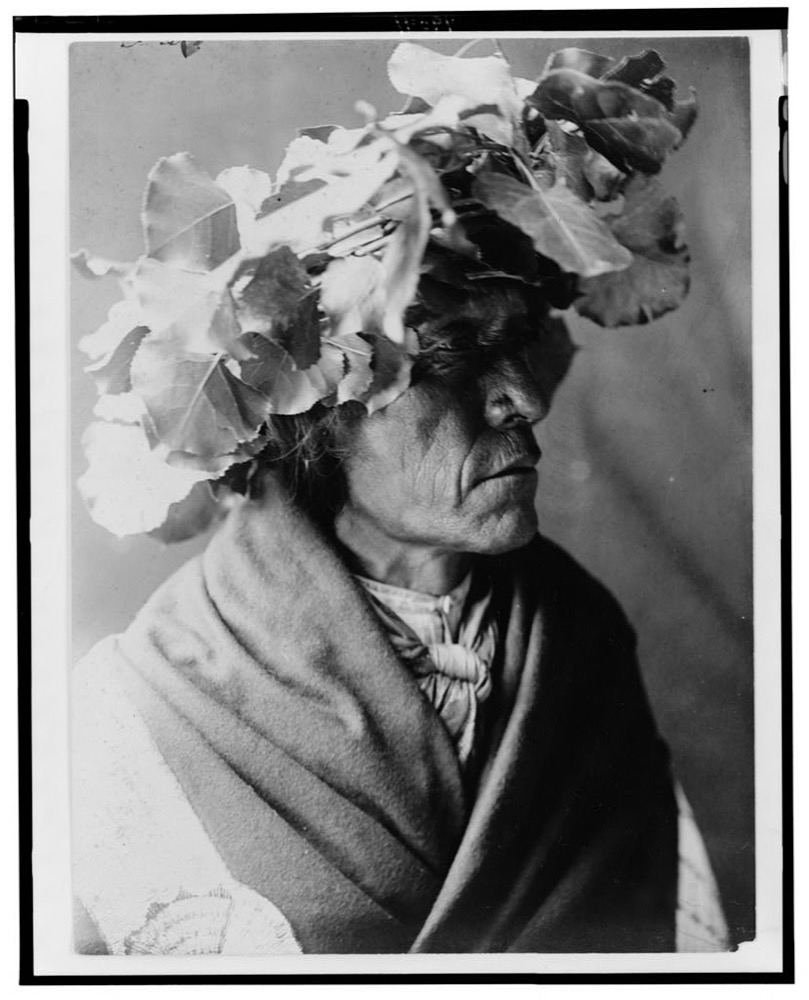 A 1910 photograph by Edward Curtis shows a Cheyenne man named Porcupine. Library of Congress Prints and Photographs Division