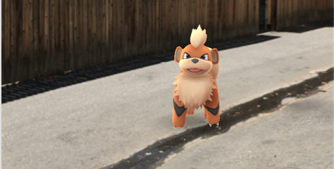 A wild Growlithe appeared in Denver on July 10, 2016.