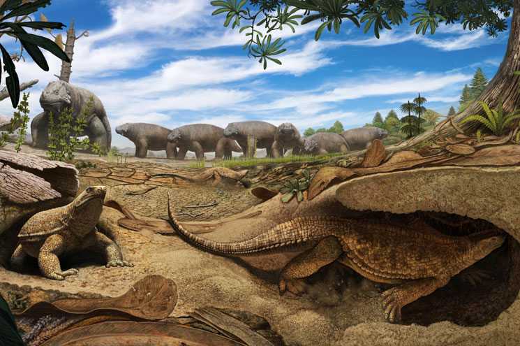 An artist's conception of a predecessor to the modern turtle. (courtesy Denver Museum of Nature & Science)