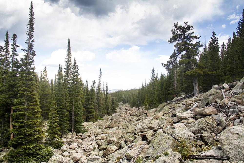 A boulder field at Rocky Mountain National Park. (Kevin J. Beaty/Denverite)  rocky mountain national park; rmnp; wilderness; kevinjbeaty; denverite; colorado;