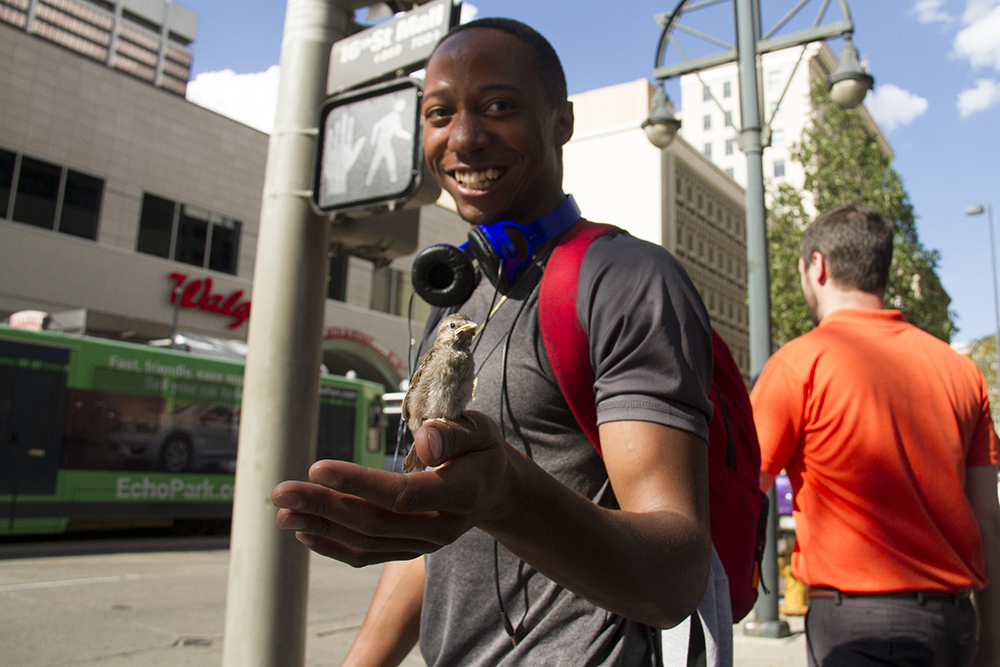 Kenny Williams and a finch he  rescued on the 16th Street Mall. Now the question is: what next? (Kevin J. Beaty/Denverite)  16th street mall; sixteenth street; central business district; downtown; denver; colorado; kevinjbeaty; denverite; cbd;