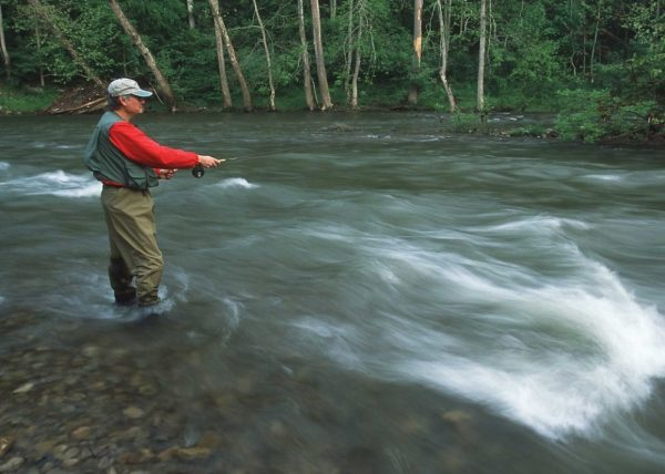 A fly fisherman on the south fork of the Holston river in Tennessee.  (Jeff Vanuga/NRCS)