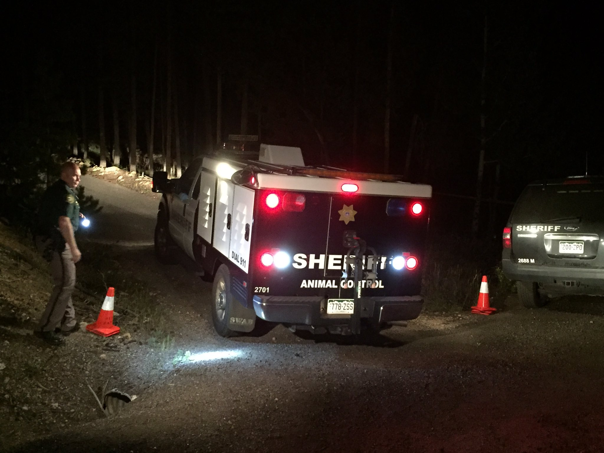 Two dogs were taken from the scene of a fatal attack in Conifer. (Jefferson County Sheriff's Office)