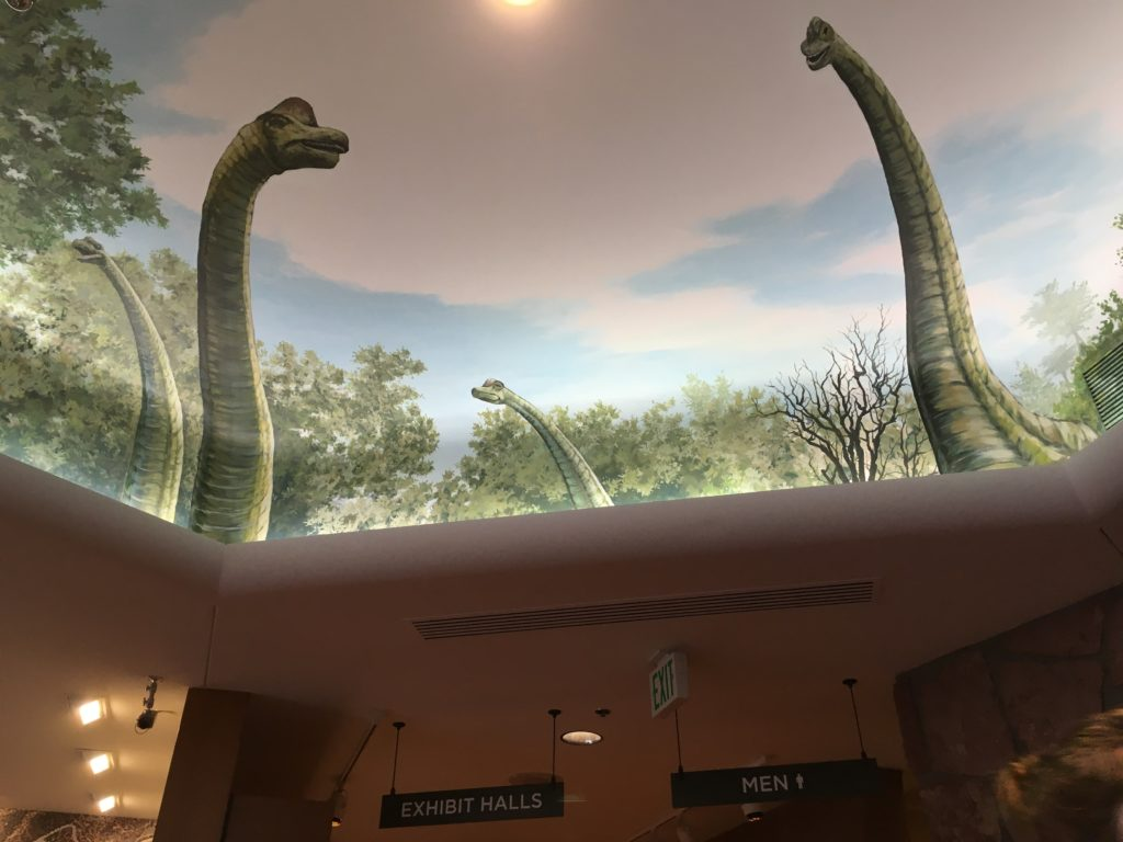 Don't forget to look up at the Garden of the Gods Visitor Center in Colorado Springs. (Dave Burdick/Denverite)