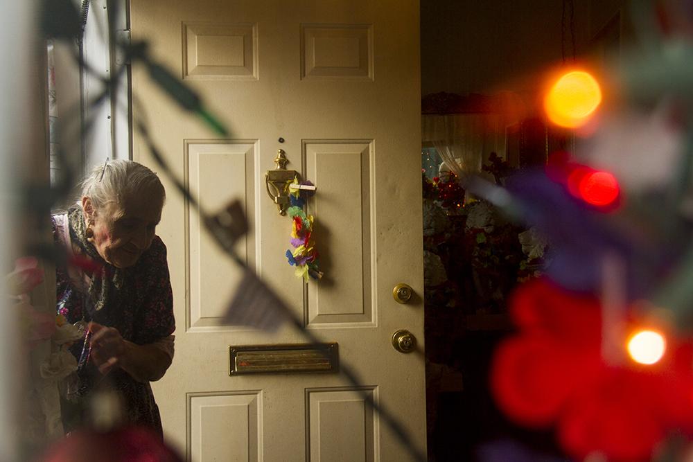 Fotini Demos in her house of flowers. (Kevin J. Beaty/Denverite)