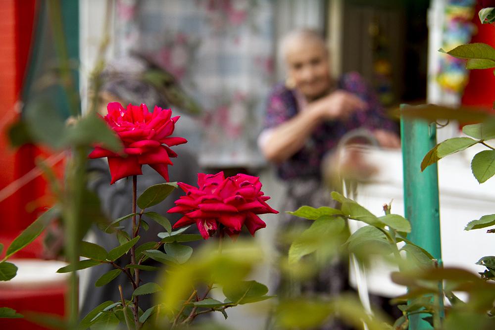Fotini Demos' in her house of flowers. (Kevin J. Beaty/Denverite)