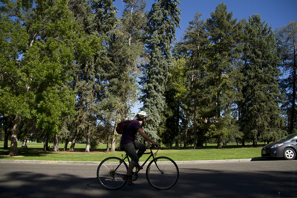 A biker in Cheesman Park. (Kevin J. Beaty/Denverite)  bikes; transportation; cheesman park; denver; denverite; kevinjbeaty; colorado;