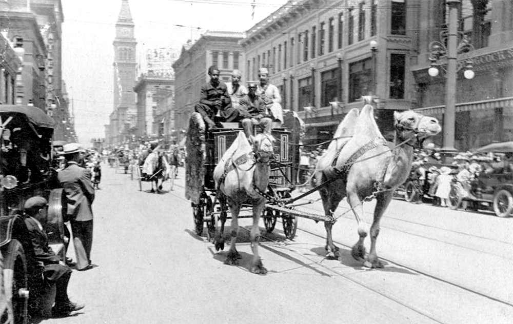 Men (Black and white) drive camels (Bactrian and Dromedary) and a circus wagon during a parade for the Sells Floto Circus and Buffalo Bill's Wild West Show in Denver, Colorado. One man holds a shanai (flute); people watch from the sides by office buildings and businesses. The Daniels and Fisher tower is in the distance. Between 1913 and 1916. (Denver Public Library/Western History Collection/Z-7566)  circus; historic; denver public library; dpl; archive; archival; denverite