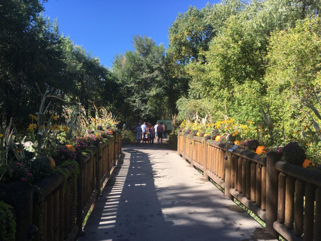 A small bridge at Chatfield Farms. (Dave Burdick/Denverite)