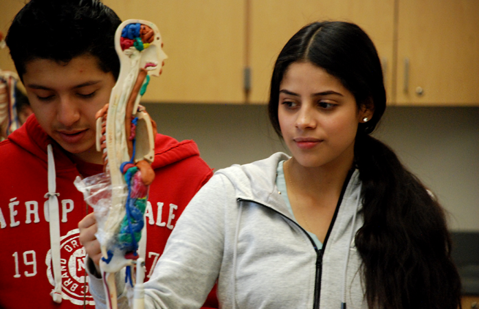 Students at Northglenn High School work during a bioscience class. (Nicholas Garcia/Chalkbeat)