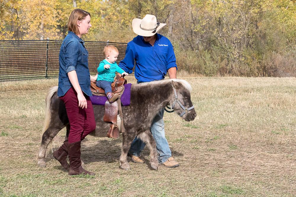This tiny baby riding a tiny pony. (Chloe Aiello/Denverite)