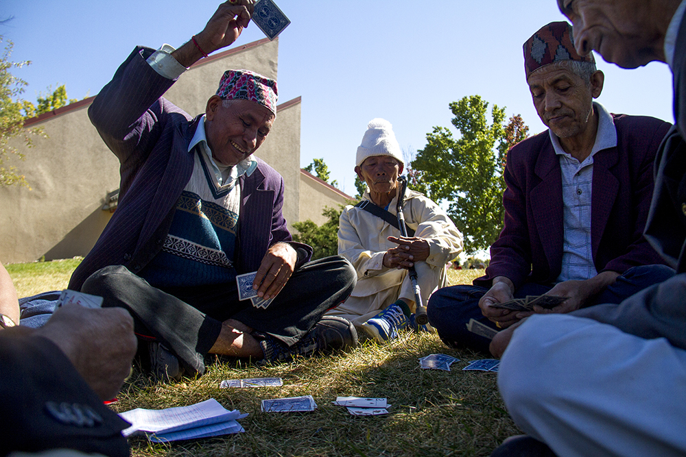 Men play cards on the lawn. The Hindu Durga Puja celebration held in Aurora's Lowry Park pavilion by the local community of Bhutanese/Nepali refugees. (Kevin J. Beaty/Denverite)  bhutanese refugees; nepali; hinduism; religion; puja; kevinjbeaty; denver; denverite; colorado;
