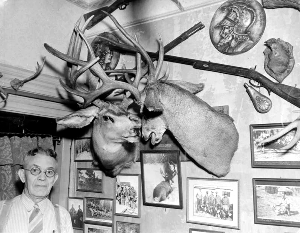 "H. H. Zietz, originator and operator of the Buckhorn Exchange restaurant, poses near taxidermied deer heads, guns, and pictures, Denver, Colorado. Zietz was also known as ""Shorty Scout."" Between 1930 and 1940. (Harry Mellon Rhoads/Denver Public Library/Western History Collection/Rh-1038)  historic; denver public library; dpl; archive; archival; denverite"