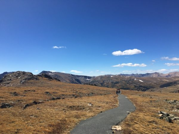 The view off Trail Ridge Road. (Andrew Kenney/Denverite)