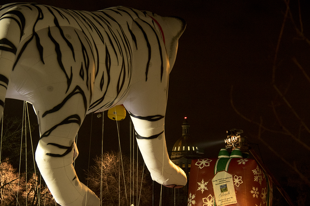 A floating tiger and wrapped gift and the capitol. Parade of lights. Dec. 2, 2016. (Kevin J. Beaty/Denverite)  parade of lights; holiday; christmas; civic center; kevinjbeaty; denver; denverite; colorado;