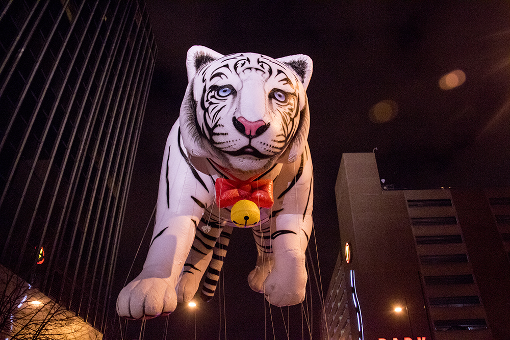 A massive tiger floats above the parade of lights. Dec. 2, 2016. (Kevin J. Beaty/Denverite)  parade of lights; holiday; christmas; civic center; kevinjbeaty; denver; denverite; colorado;