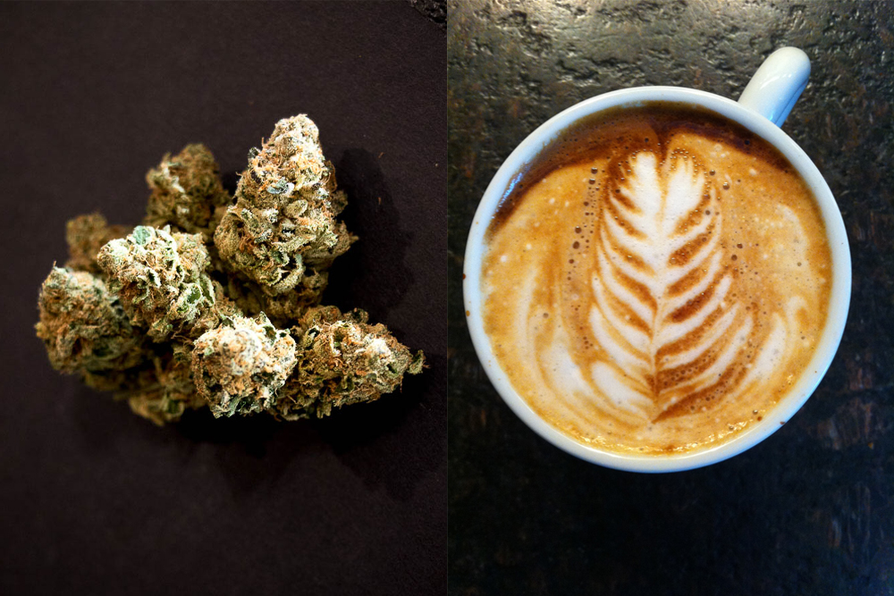 Weed and coffee. (Chloe Aiello/Denverite, Fil.Al/Flickr)