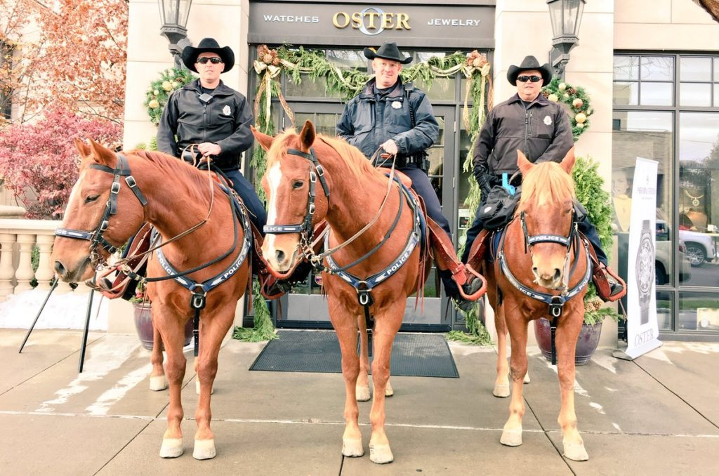 A horse named Fabio is in here somewhere. (Denver Police Department)