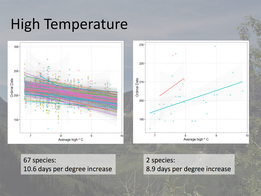 Changes in bloom date of select species as it relates to annual average high temperatures. (Courtesy Denver Botanic Gardens)