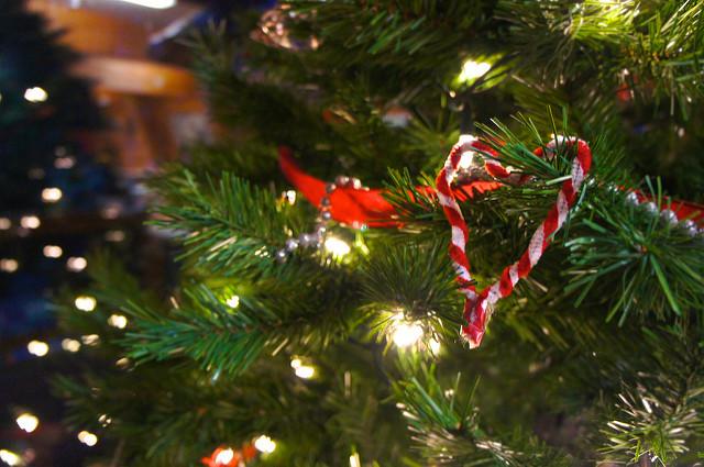 Christmas tree. (Johnny Lai via Flickr)