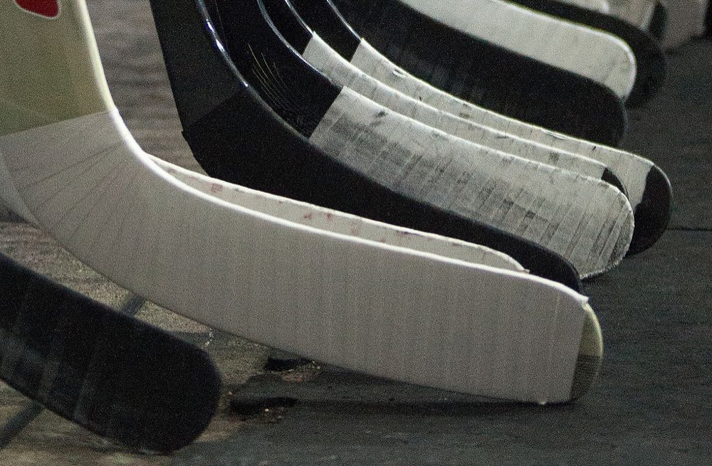 Hockey sticks. (Fanny Schertzer/Wikimedia Commons)