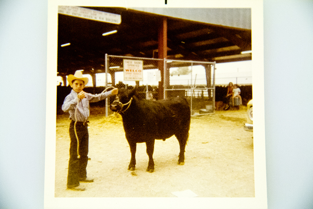 """Catch-it-calf"" competitor David Graybull and Luke the heifer, National Western Stock Show 1972. (Denver Public Library/Western History Collection/Denver Metro Chamber of Commerce Records)  denver; denverite; denver public library; western history collection; archive; archival; National Western Stock Show; nwss;"