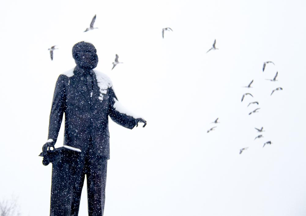 The Martin Luther King Jr. statue in City Park, Jan. 16, 2017. (Kevin J. Beaty/Denverite)