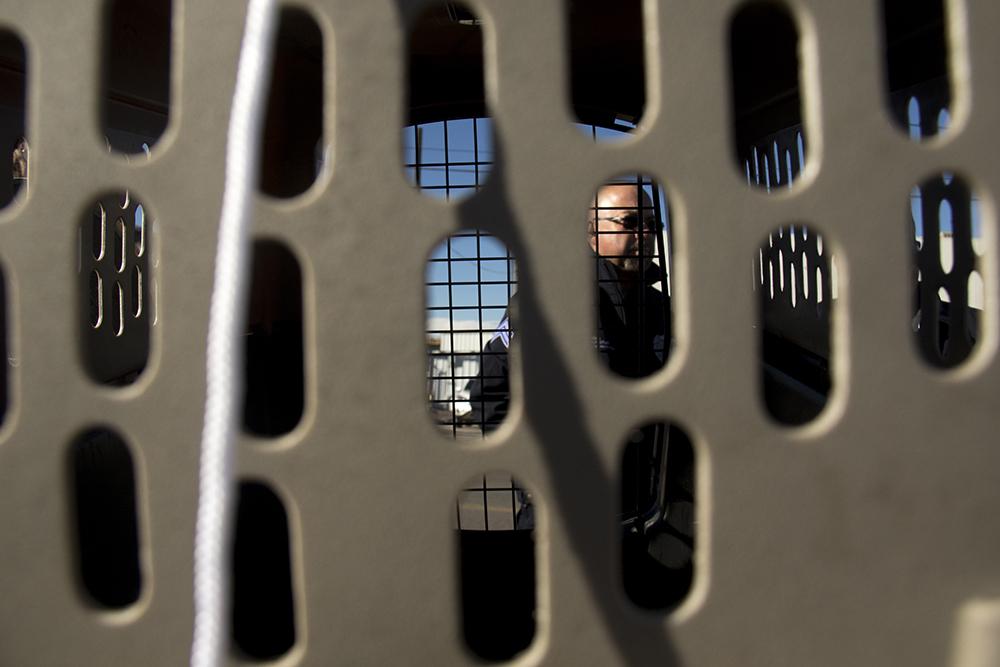 "Denver Animal Protection sergeant Stephen Romero checks on Amanda Berry's cat, O'Malley, as city workers ""sweep"" a homeless encampments at Denargo and Delgany Streets, Jan. 26, 2016. (Kevin J. Beaty/Denverite)  homelessness; sweeps; right to rest; denver; colorado; kevinjbeaty; denverite;"