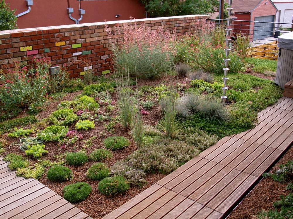 A rooftop garden on Quivas Street in Denver. (Courtesy Denver Green Roof Initiative.)