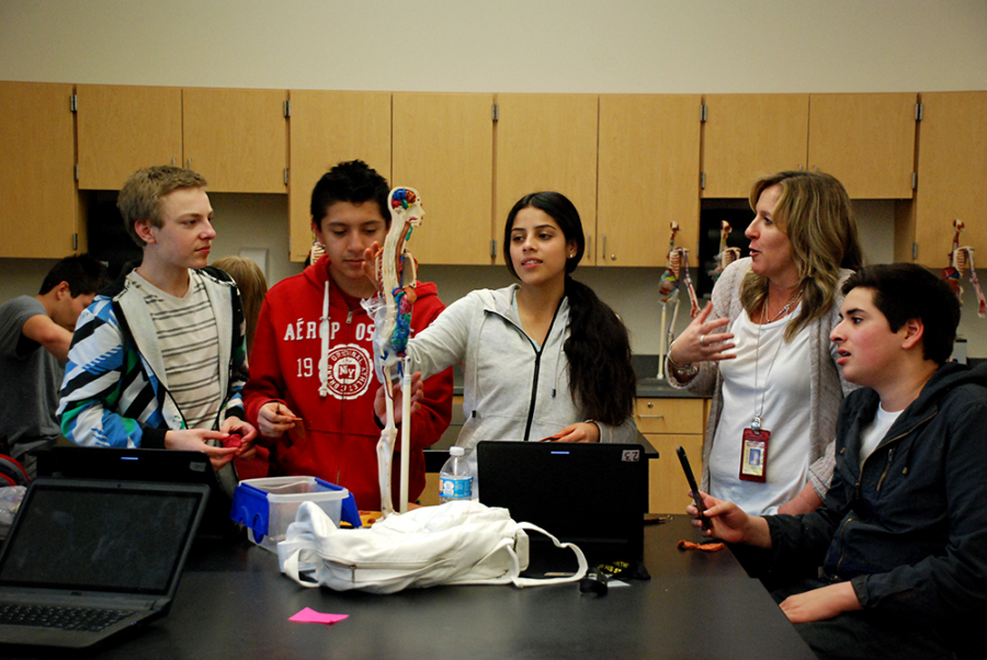 Students at Northglenn High School who are studying biomedical science work on an assignment. The class is part of the school's STEM offerings. (Nicholas Garcia/Chalkbeat)
