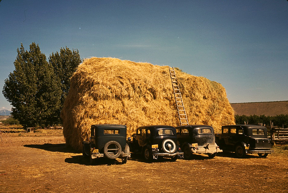 Hay stack and automobile of peach pickers, Delta County, Colorado, 1940. (Russell Lee/Library of Congress/LC-DIG-fsac-1a34202)