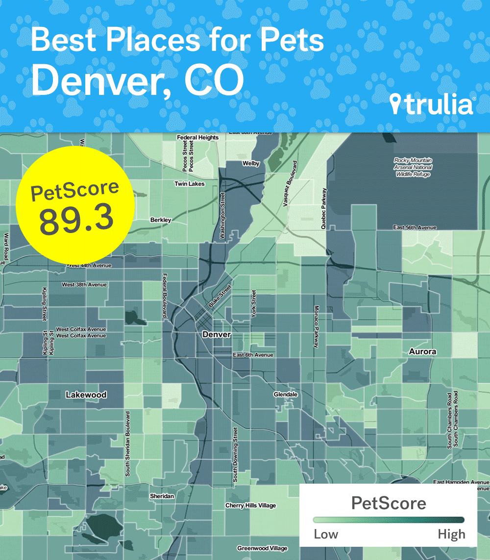 Trulia ranked Denver as the most pet-friendly metro. (Courtesy of Trulia)