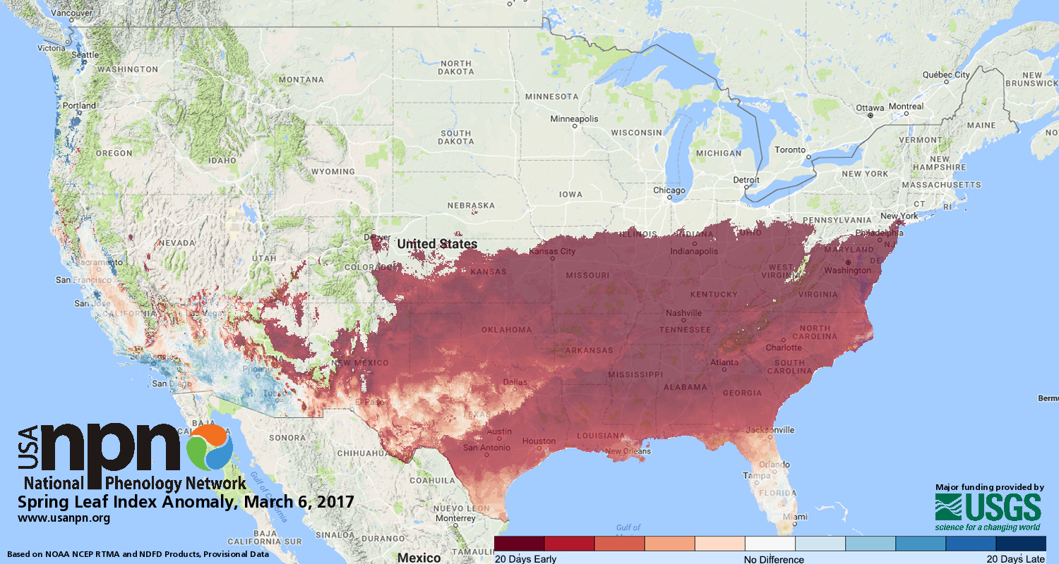 Spring status as of March 6, 2017, according to computer models and citizen reports. (National Phenology Network)