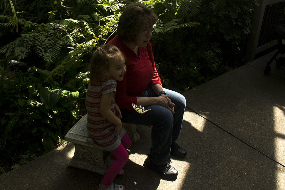Mary Cunningham and her 5-year-old niece Avery watch a specimen flutter by inside the Butterfly Pavilion in Westminster, April 6, 2017. (Kevin J. Beaty/Denverite)  butterfly pavilion; bugs; animals; insects; science; environment; kevinjbeaty; denverite; colorado; denver;