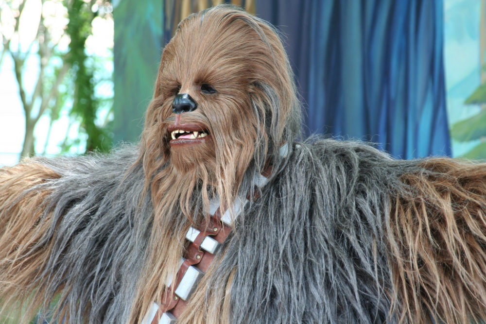 It's me, Chewbacca. (Jeff Christiansen/Flickr/CC BY-SA 2.0)