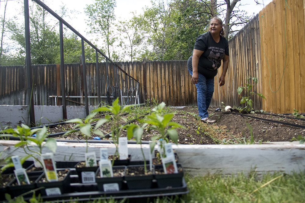 Re:Vision promotora Leticia Manquera works the garden at Jose and Antonia's home in Harvey Park, May 26, 2017. (Kevin J. Beaty/Denverite)  food desert; agriculture; gardening; re:vision; revision; harvey park; denver; denverite; colorado; kevinjbeaty;