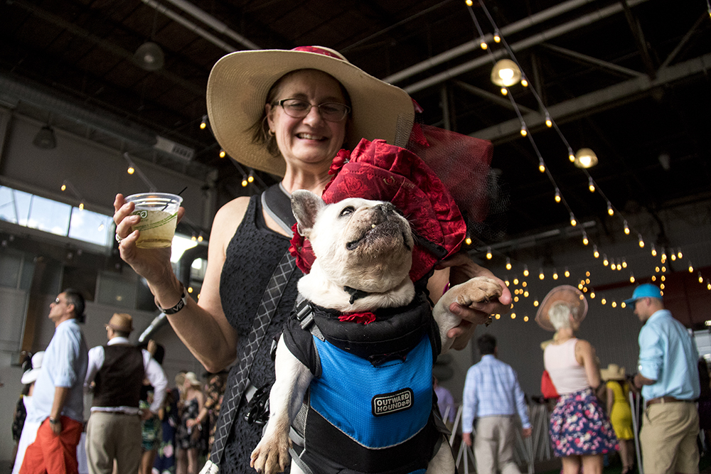 Marleen Puzak and her oft-costumed French bulldog Beignet. A Kentucky Derby party at Stanley Marketplace, May 6, 2017. (Kevin J. Beaty/Denverite)  stanley marketplace; kentucky derby; aurora; kevinjbeaty; denverite; colorado; dogs; pets; animals;