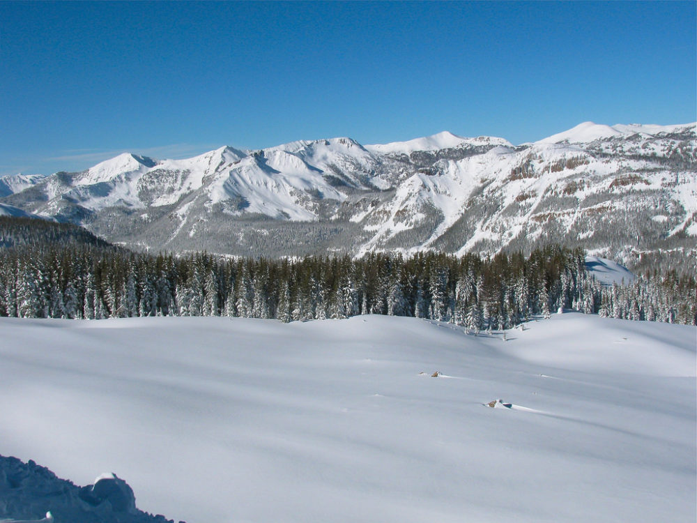 View from top of Bonanza Lift at Wolf Creek Ski Area. (JustTooLazy/Flickr)