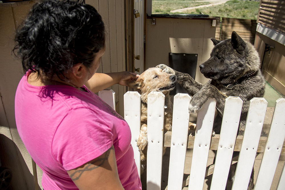 Ana Tovar with her dogs Cubo (right) and Freckles. Denver Meadows RV Park, May 15, 2017. (Kevin J. Beaty/Denverite)  aurora; denver meadows; mobile home park; kevinjbeaty; denverite; colorado; dogs; pets; animals;