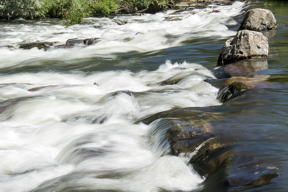 South Platte Park. (Kevin J. Beaty/Denverite)  south platte river; south platte park; littleton; tubing; summer; kevinjbeaty; denver; denverite; colorado;