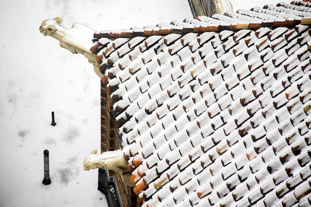 Gargoyles designed by Robert Garrison, hidden atop the Midland Savings building downtown (now Midland Lofts). (Kevin J. Beaty/Denverite)  gargoyle; architecture; robert garrison; central business district; downtown; kevinjbeaty; snow; cowx; denverite; denver;