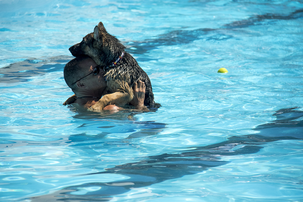 Ed Melanson (human) and Blaze. Dog-a-Pool-ooza at Cook Park Pool, Aug. 13, 2017. (Kevin J. Beaty/Denverite)  public pool; dogs; pets; Dog-a-Pool-ooza; cook park; denverite; colorado; kevinjbeaty; denver;