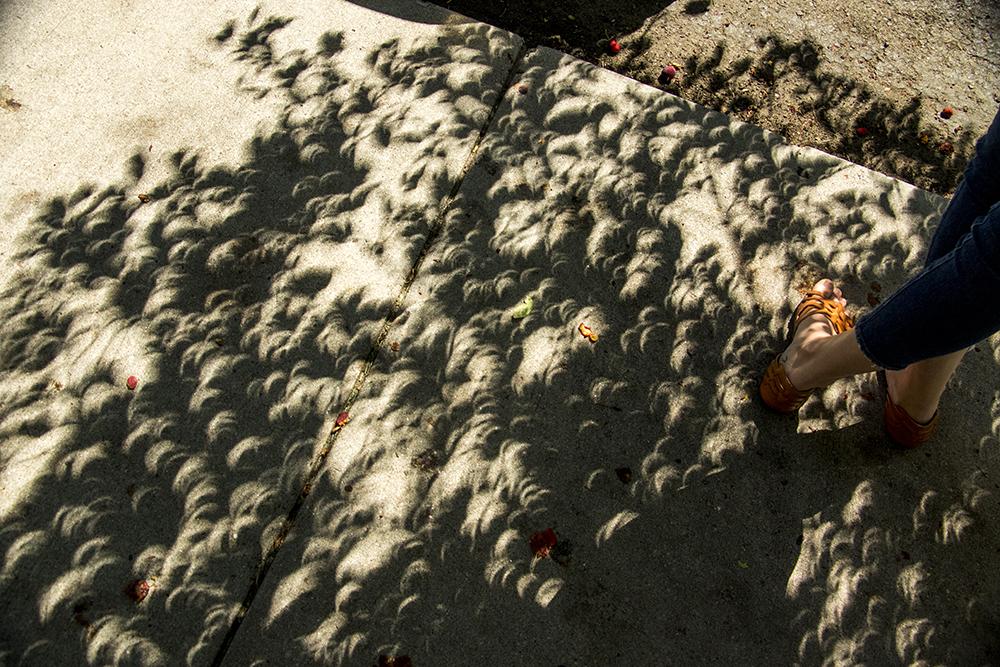 Solar eclipse-shaped shadows beneath the Capitol, Aug. 21, 2017. (Kevin J. Beaty/Denverite)  solar eclipse; capitol hill; denver; colorado; the sun; kevinjbeaty; denverite;