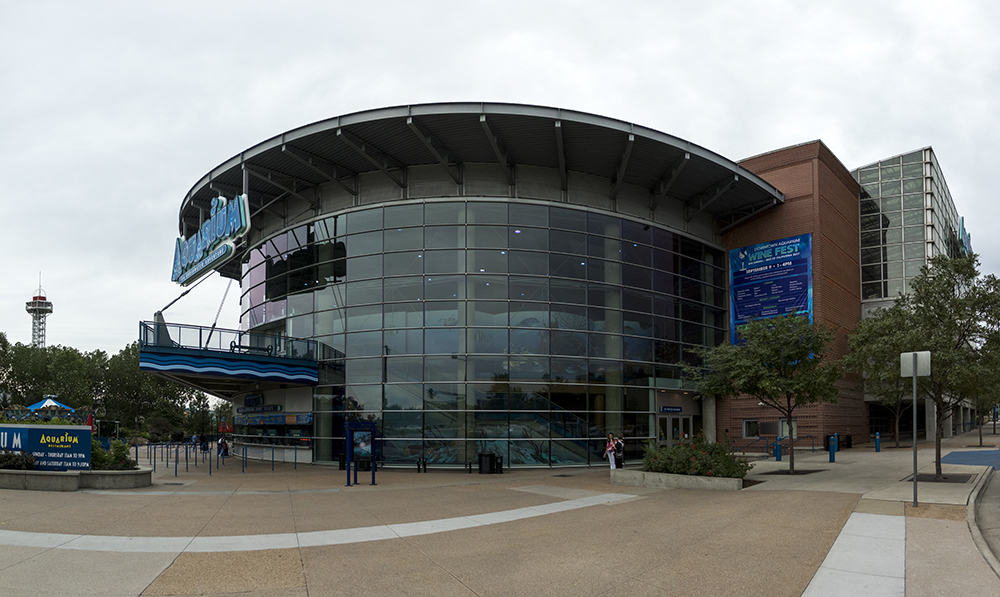 The Denver Downtown Aquarium. (Kevin J. Beaty/Denverite)  denver; colorado; denverite; kevinjbeaty; jefferson park;