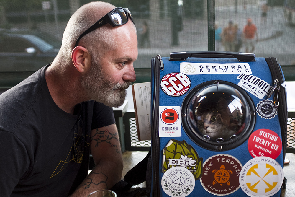 Elaia the brewery cat visits Wynkoop brewery and head brewer John Sims Aug. 30, 2017. (Kevin J. Beaty/Denverite)   beer; brewery; denver; colorado; brewery cat; pets; animals; nightlife; denverite; kevinjbeaty;