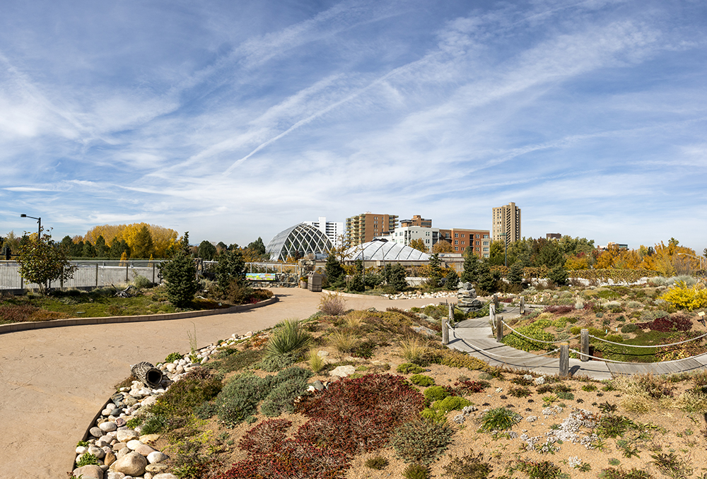 Denver Botanic Gardens' Mordecai Children's Garden on top of their parking structure across the street from the York Street location. Oct. 19, 2017. (Kevin J. Beaty/Denverite)  green roof; sustainability; architecture; kevinjbeaty; denver; denverite; colorado; denver botanic gardens;